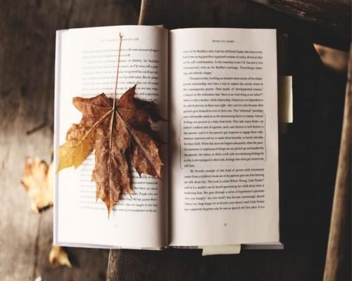 Top 7 carti si autori ai tuturor timpurilor