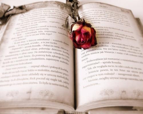 Cele mai tumultoase despartiri din literatura