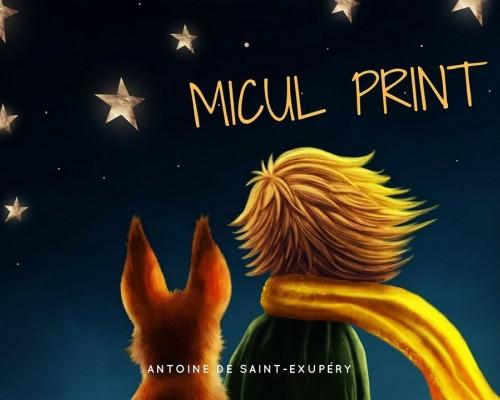 """Recenzie - """"Micul Print"""", de Antoine de Saint-Exupery"""