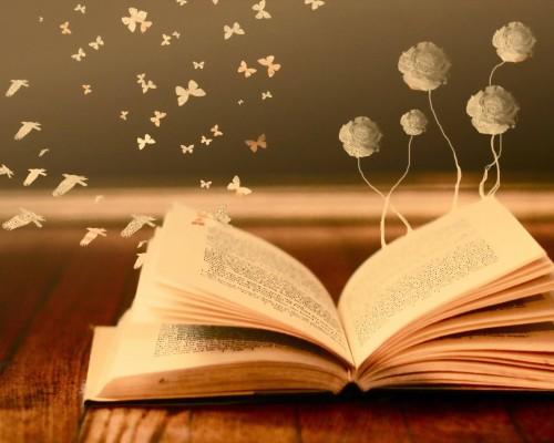 Top 1000 cele mai frumoase carti de citit pentru a fi un om cult